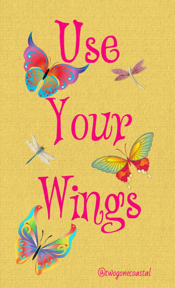 Use Your Wings @twogonecoastal