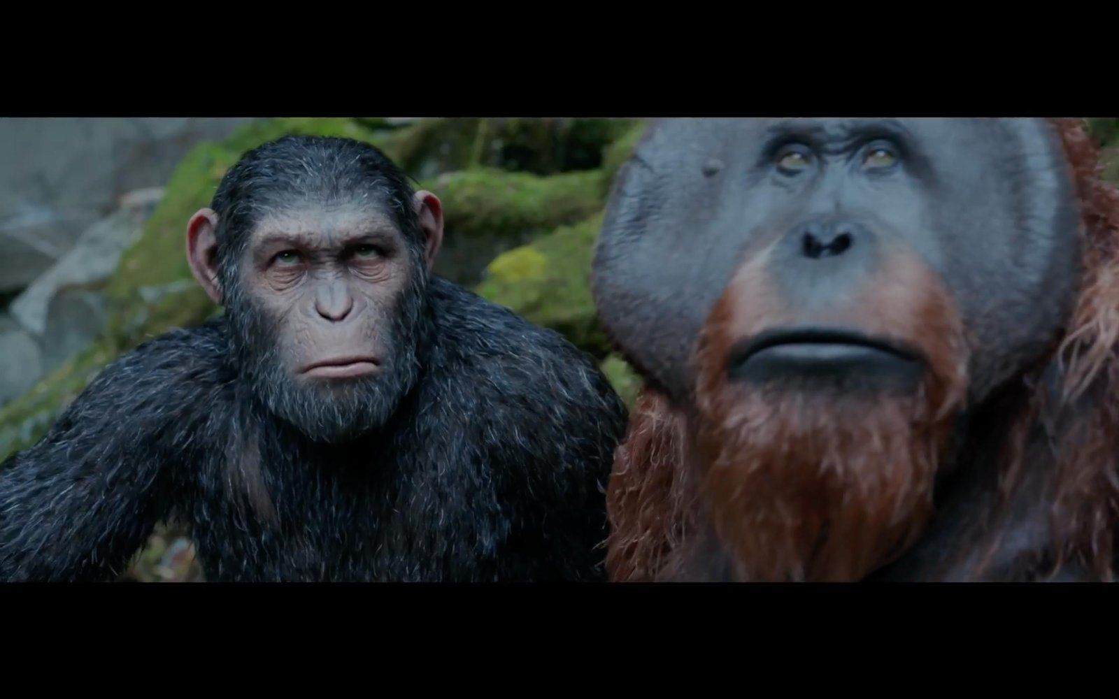 War For The Planet Of The Apes 2017 Watch Hd 1080p Planet Of The Apes The Planet Of The Apes Apes