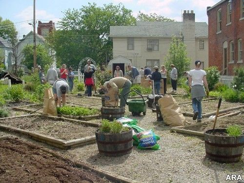 17 Best 1000 images about Community Garden on Pinterest Gardens