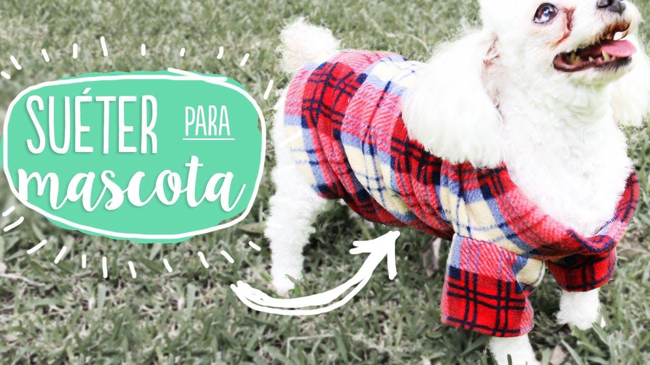¡Haz un suéter para tu mascota! calientito, bonito y fácil ✂️ Craftingeek