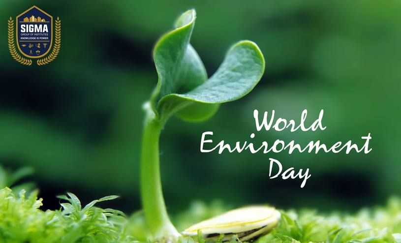 Let The Peace Of Nature Flow In Your Life On World Environment Day And Alway Have A Great Celebration Pinterest D Essay