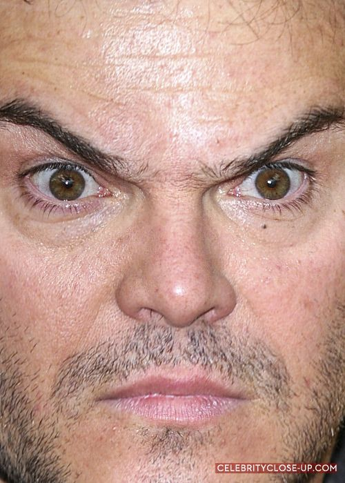 jack black and his amazing eyebrows from celebrityclose up com