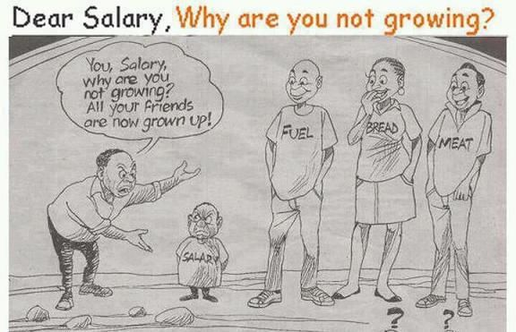 Dear Salary Why Are You Not Growing All Your Friends Fuel Bread Meat Are Growing Funny Pictures Funny Growing Up