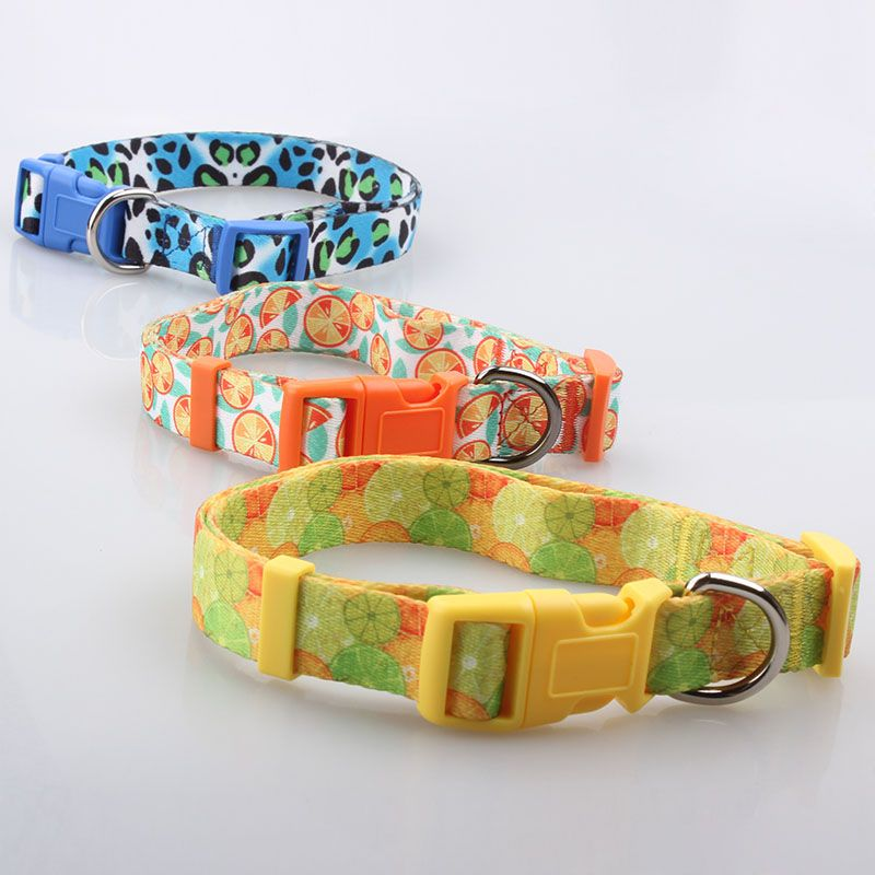 Custom Dog Collars Qqpets Custom Dogcollar Special Wholesale