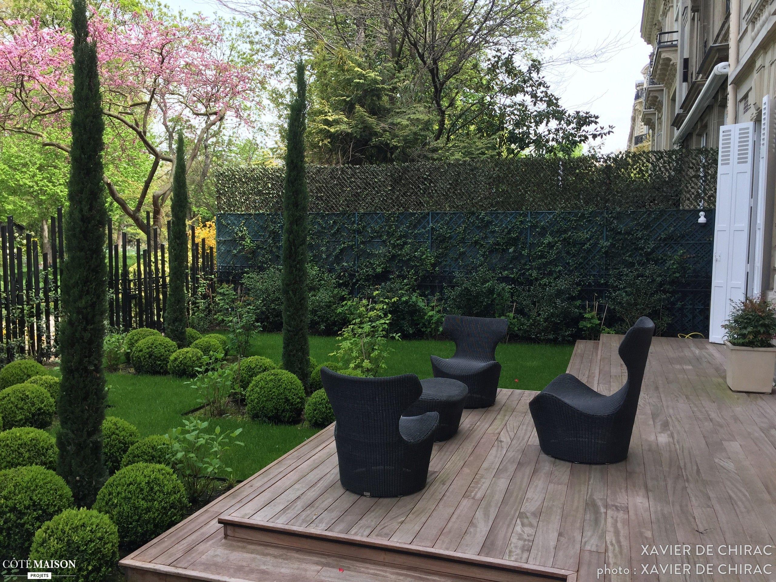 un jolie arbre de jud e des cypres d 39 italie pour cr er des fen tre sur une nature en pleine. Black Bedroom Furniture Sets. Home Design Ideas