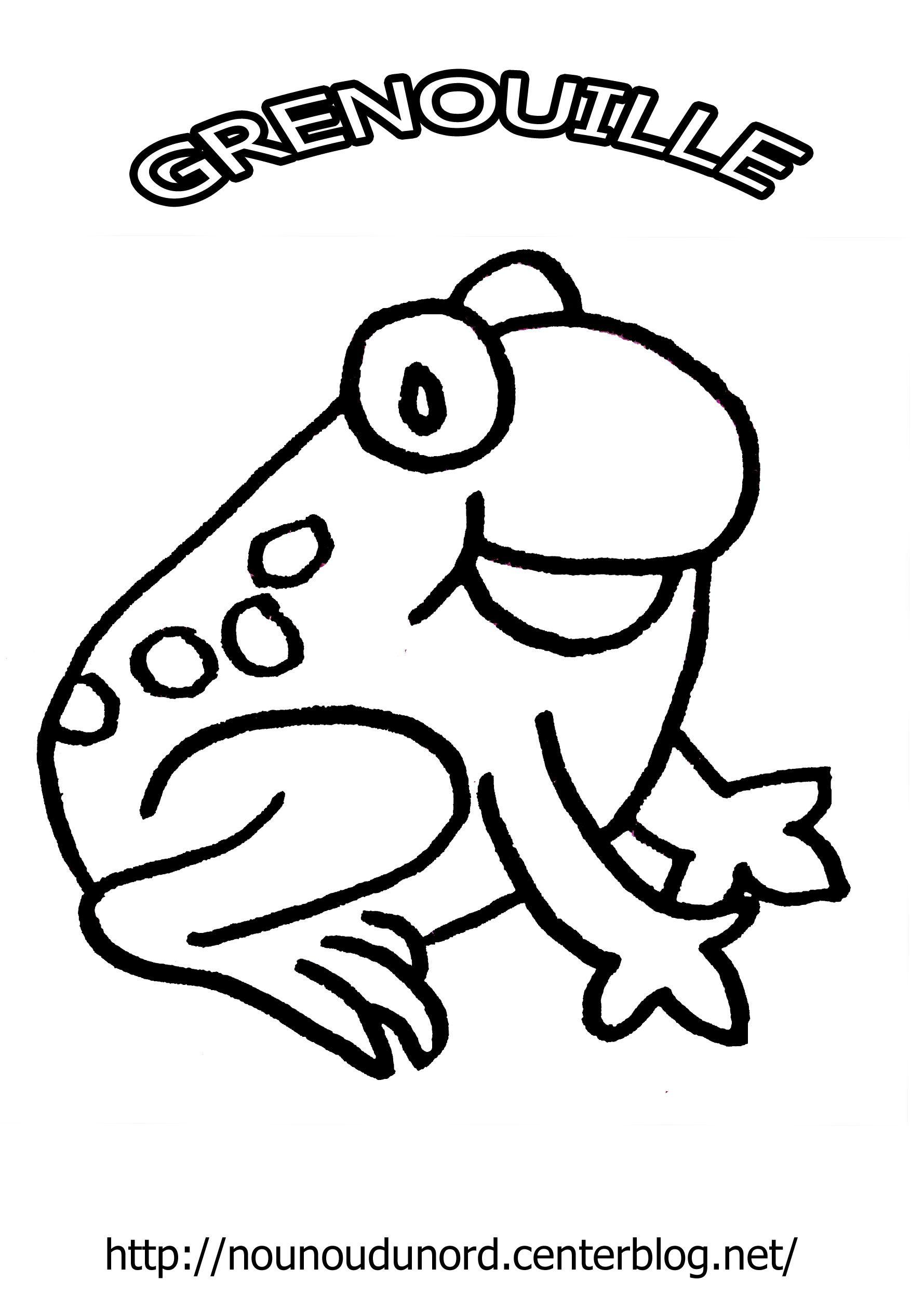 Coloriage grenouille pour maternelle 20