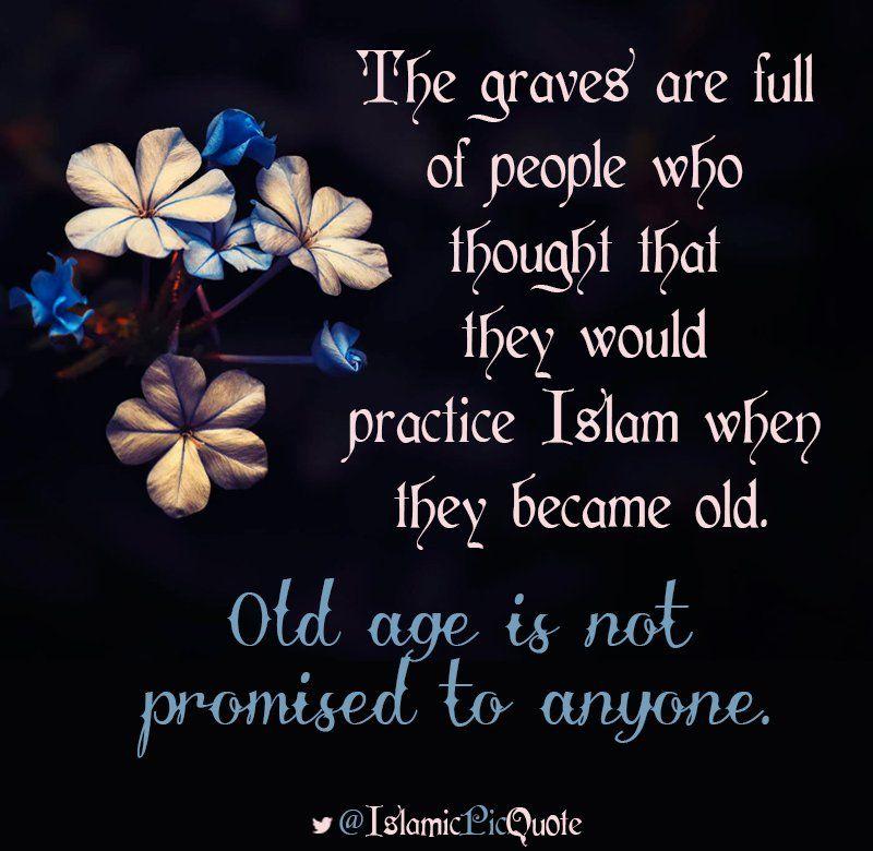 Twitter Islam Twitter Knowledge