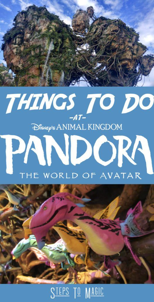 Top Things To Do at Pandora The World of Avatar #animalkingdom