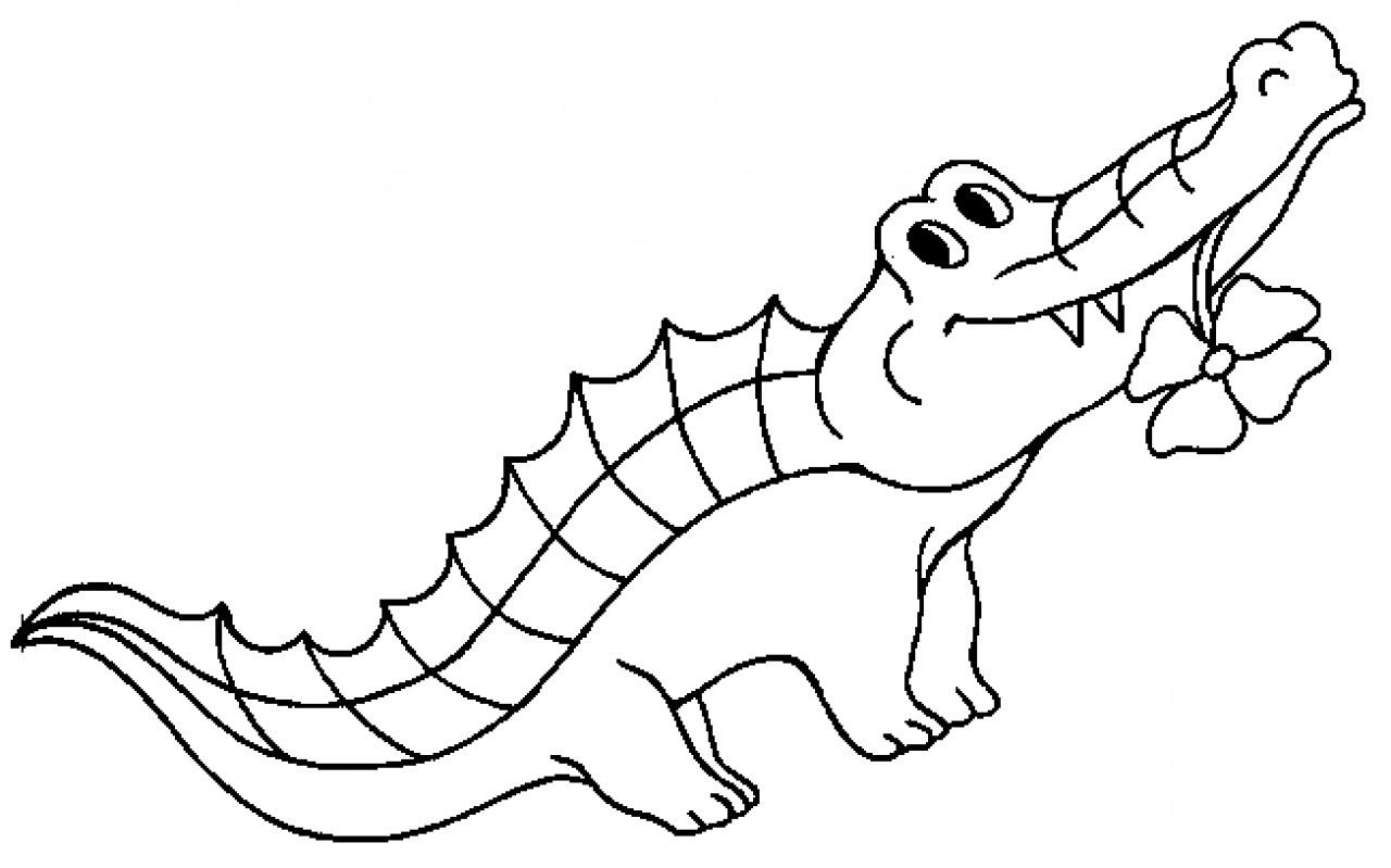 printable crocodile coloring pages for kids 17 best images about reptiles on funny cartoon and python - Crocodile Coloring Pages Print