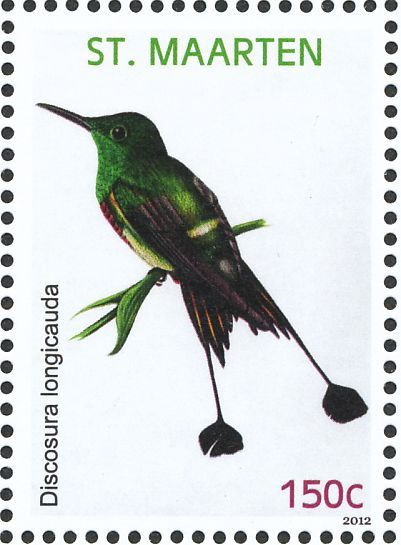 Racket-tailed Coquette stamps - mainly images - gallery format