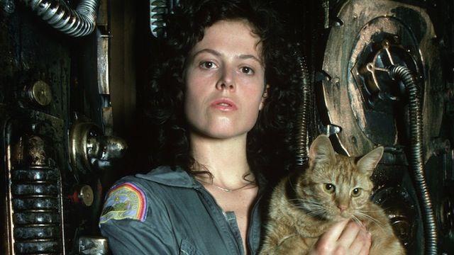 Top 5 Film Cats Sigourney Weaver Alien Cats