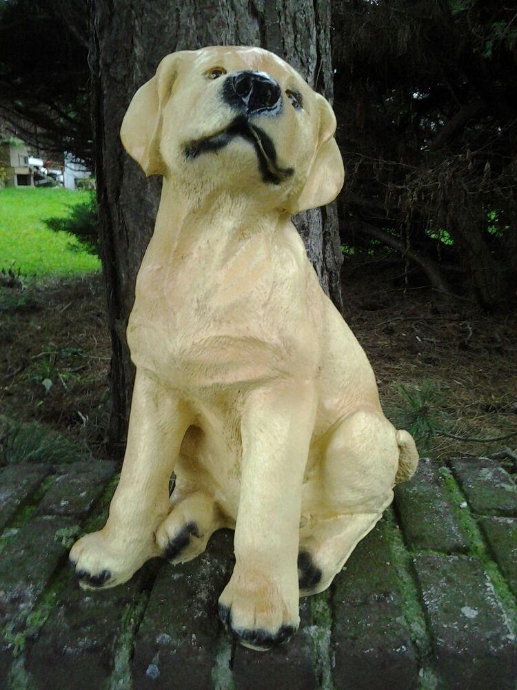 Undefined Hunde Garten Hunde Retriever Welpen