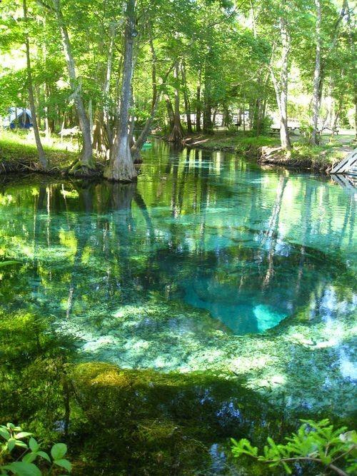 Turquoise Pool, Ginnie Springs, Florida photo via thisis