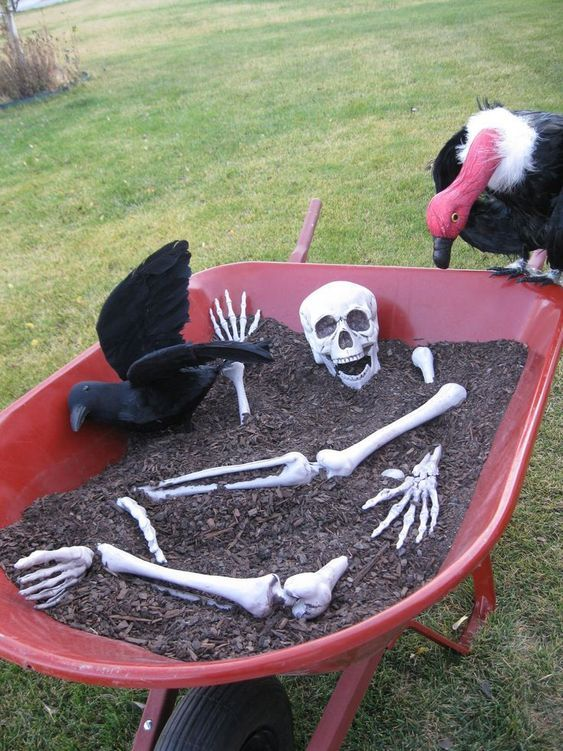 85+ Ghoulish And Astounding Halloween Yard Décor Ideas Pinterest - pinterest halloween yard decor