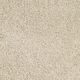 Stainmaster Stellar Active Family Colony Plush Carpet Sample