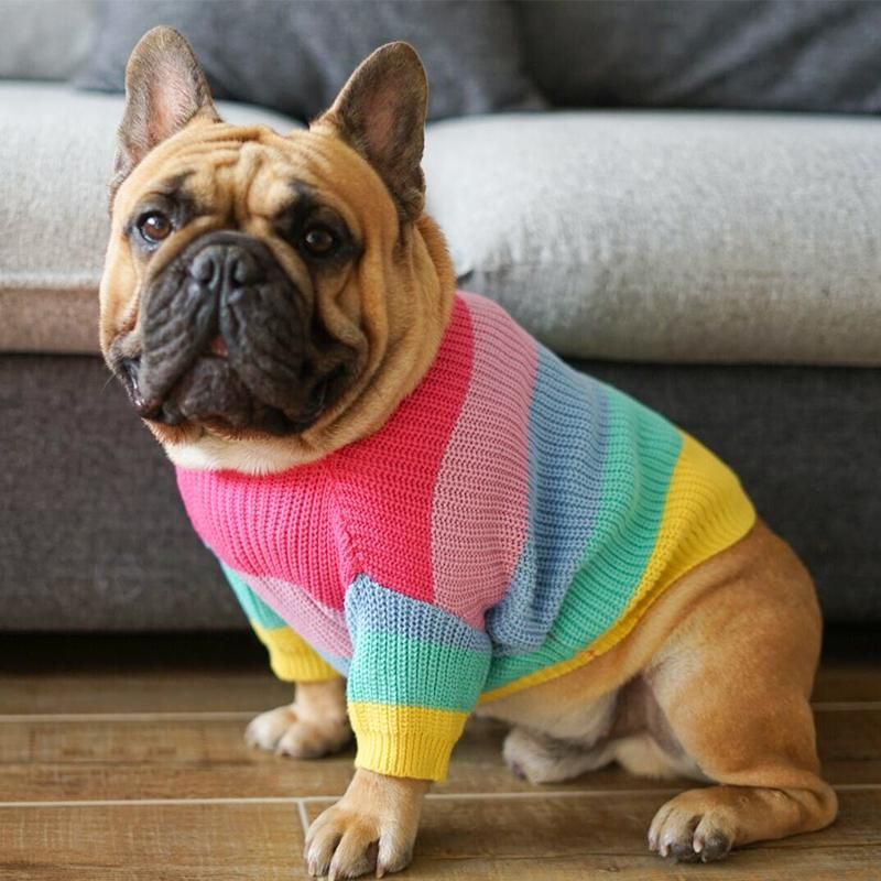 Rainbow Knitted Jumper French Bulldog Clothes Dog Sweaters
