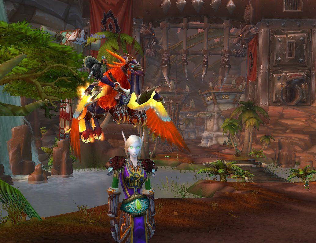 papadum, the flying turkey 'Alfrek'
