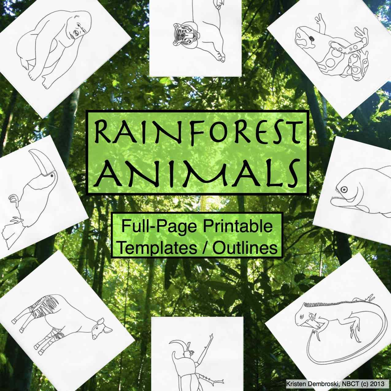 Rainforest Animals Printable Full Page Outlines