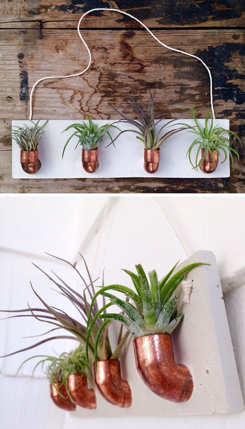 12 Elegant Ways To Bring Air Plants Into Your Home // This Copper And  Concrete Air Plant Holder Gives Your Plants A Home On The Wall.