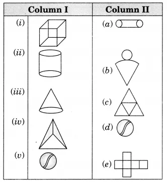 Visualising Solid Shapes Class 7 Extra Questions Maths Chapter 15 Learn Cbse Ncertsolutions Cla This Or That Questions Maths Ncert Solutions Solid Figures