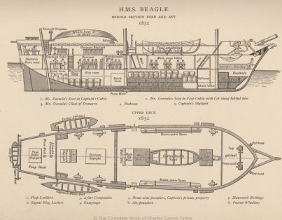 Diagram Of Hms Beagle 1832 This Drawing Not Entirely Accurate