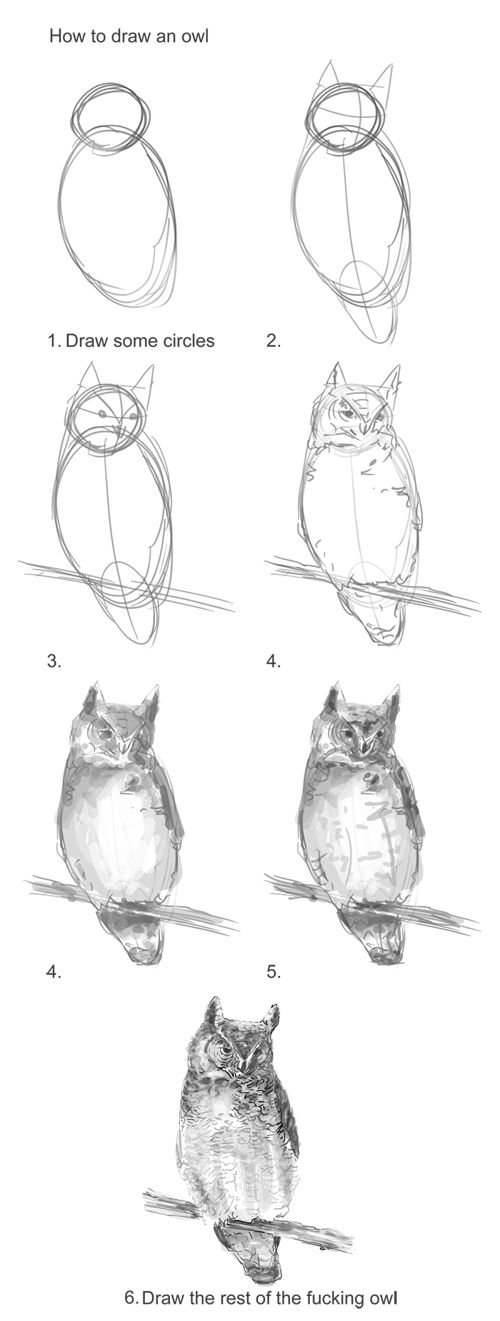 How to draw an owl the missing steps drawing for Step by step drawing an owl