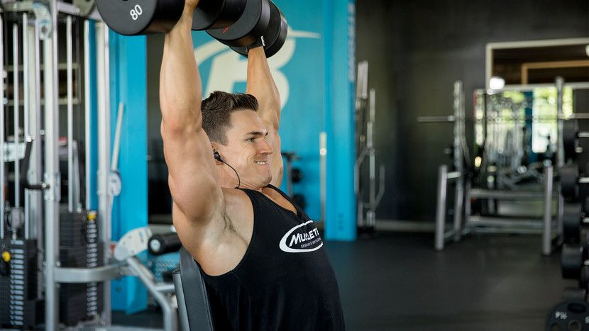 Your Blueprint For Building Bigger Shoulders Exercises - microsoft exercise