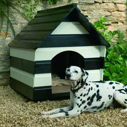 Black And White Stripes On My Dogs House Dog House