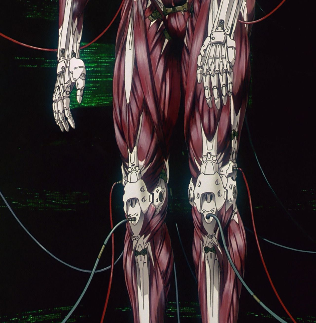 ghost in the shell Google Search Innards Pinterest