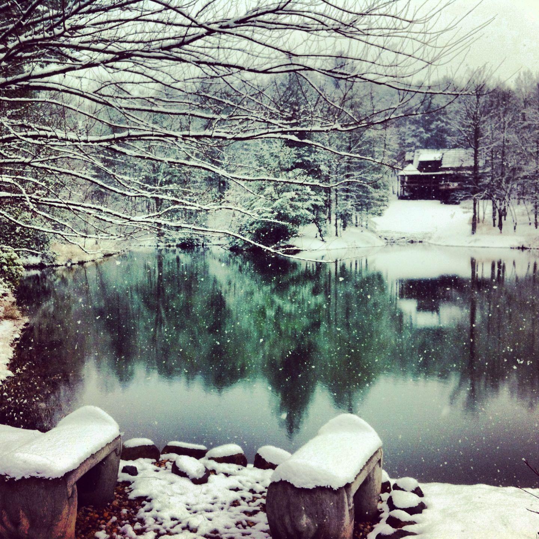 Snow In Blue Ridge Ga 2 11 14 Favorite Places Spaces