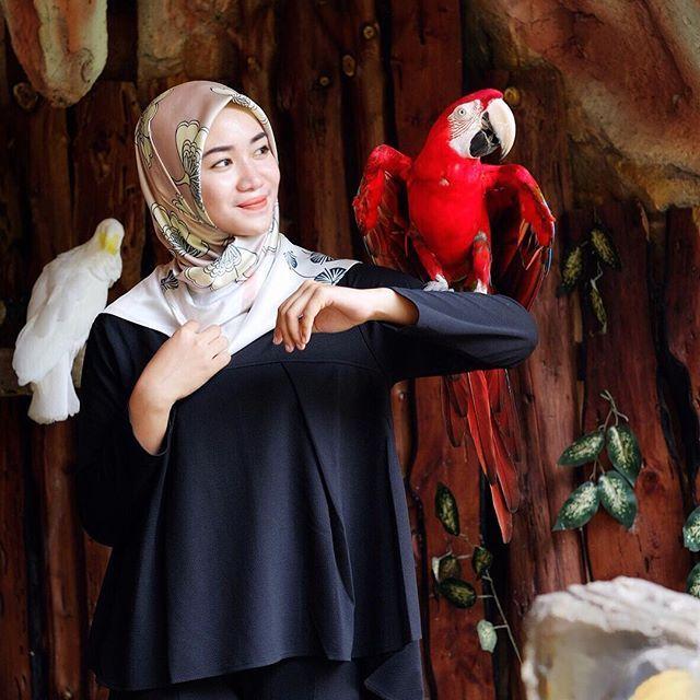 🇮🇩🦅Stare in the face red feathered bird 🦅🇮🇩 #bird #indonesia #cintaindonesia ❤#burungkakatuamacau