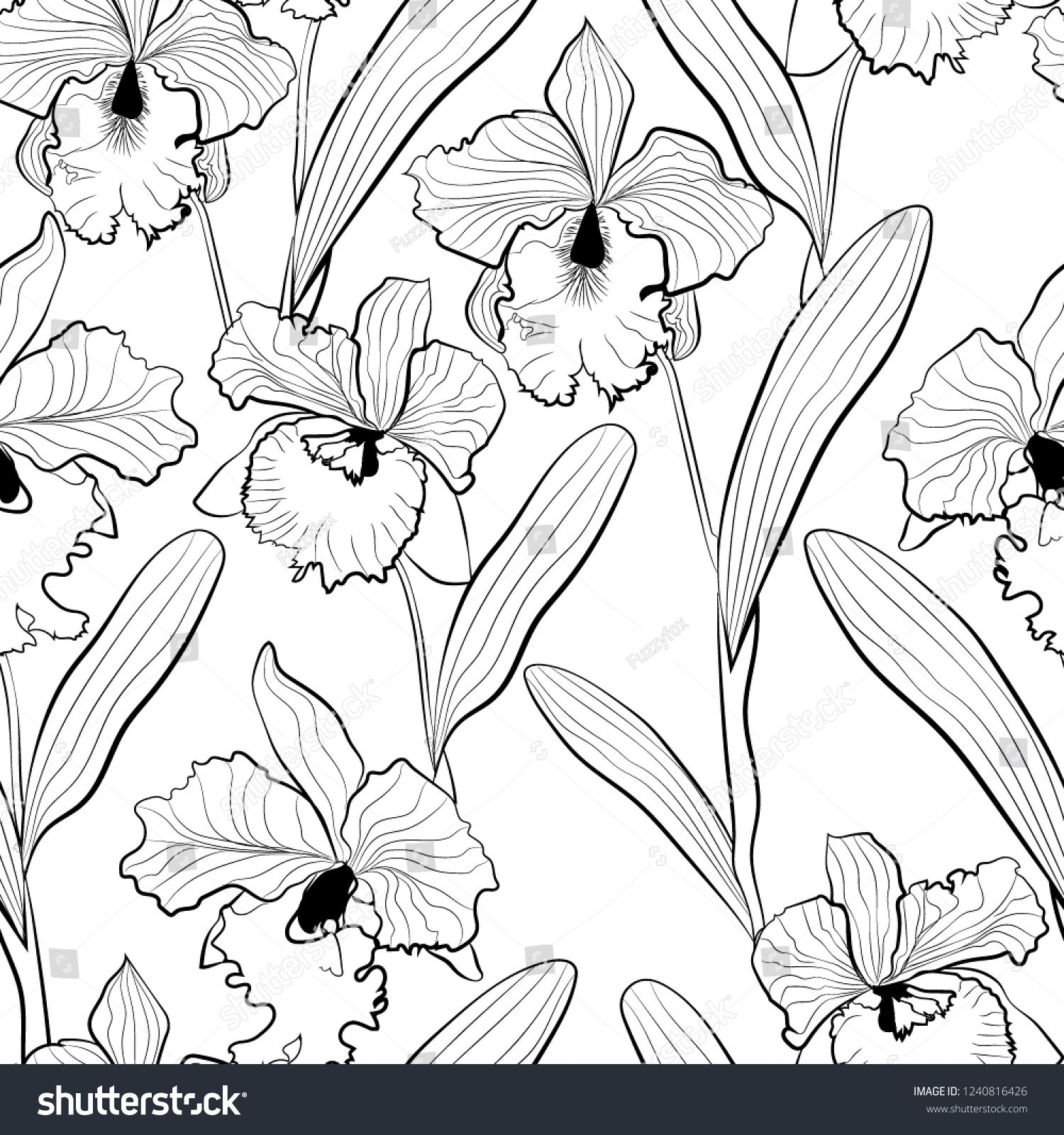 Vector De Stock Libre De Regalias Sobre Seamless Orchid Flowers Cattleya Sketched Pattern1240816426 En 2020 Bocetos De Flores Flores Para Dibujar Flores Orquideas