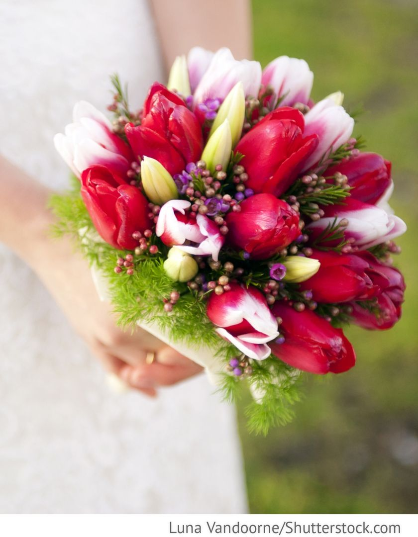 Brautstrau mit roten Tulpen Frhling Hochzeit fr