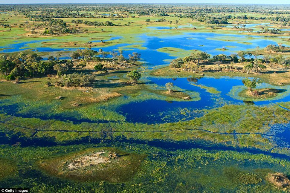 дельта реки Окаванго