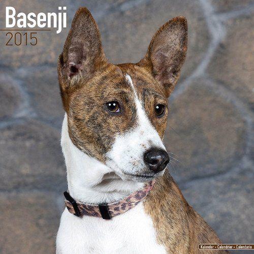 Pin by MegaCalendars com on 2105 Dog breed calendars | Dog
