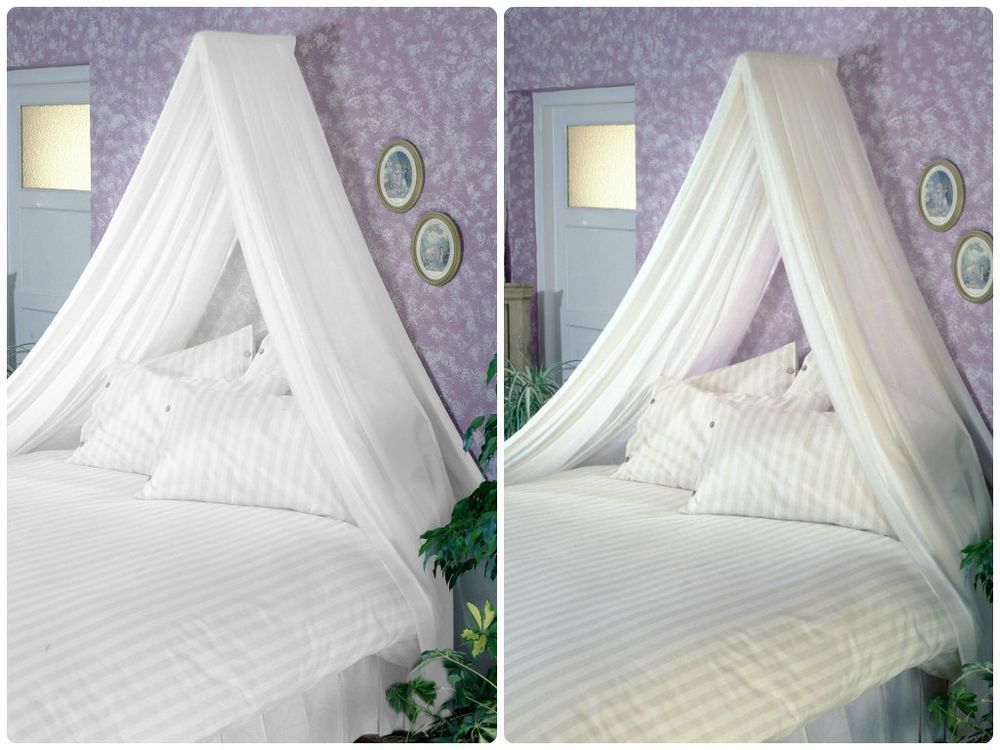 Adult Bed Canopy Inc Voile Wall Rod Kit White Cream Fits Single