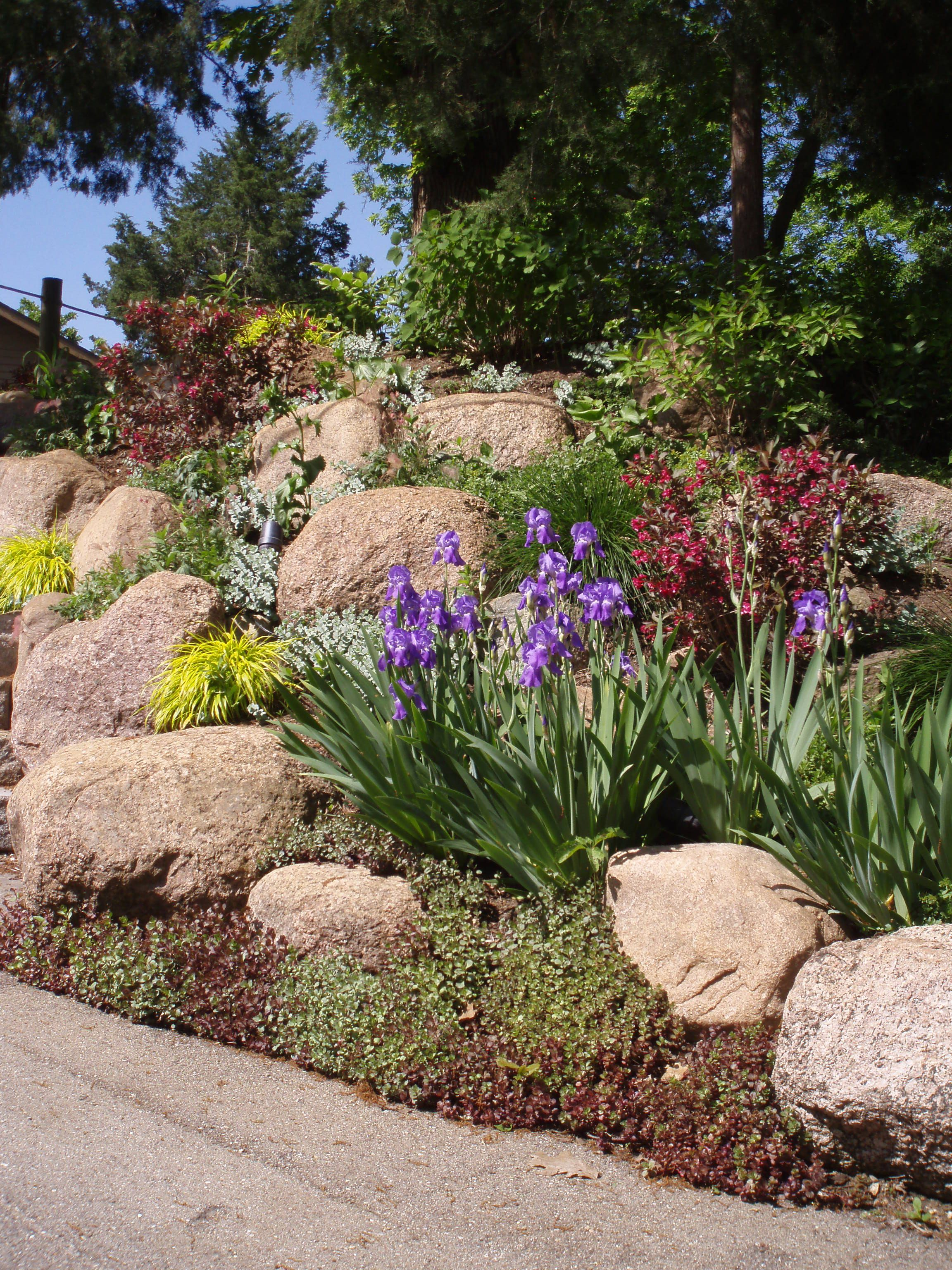 Retain a steep slope using boulder cropping then secure for Hillside landscaping plants