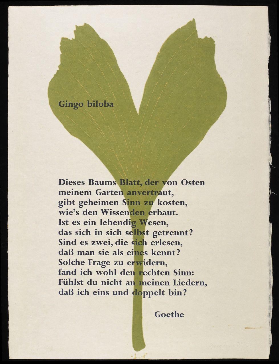 Ginkgo Biloba Frankfurter Goethe Haus Freies Deutsches