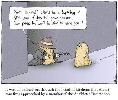 Approached By The Antibiotic Resistance Biology Humor Biology