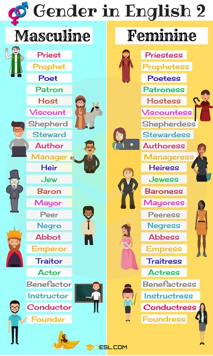 Gender of Nouns | Dil | Pinterest | Gender, Feminine and English