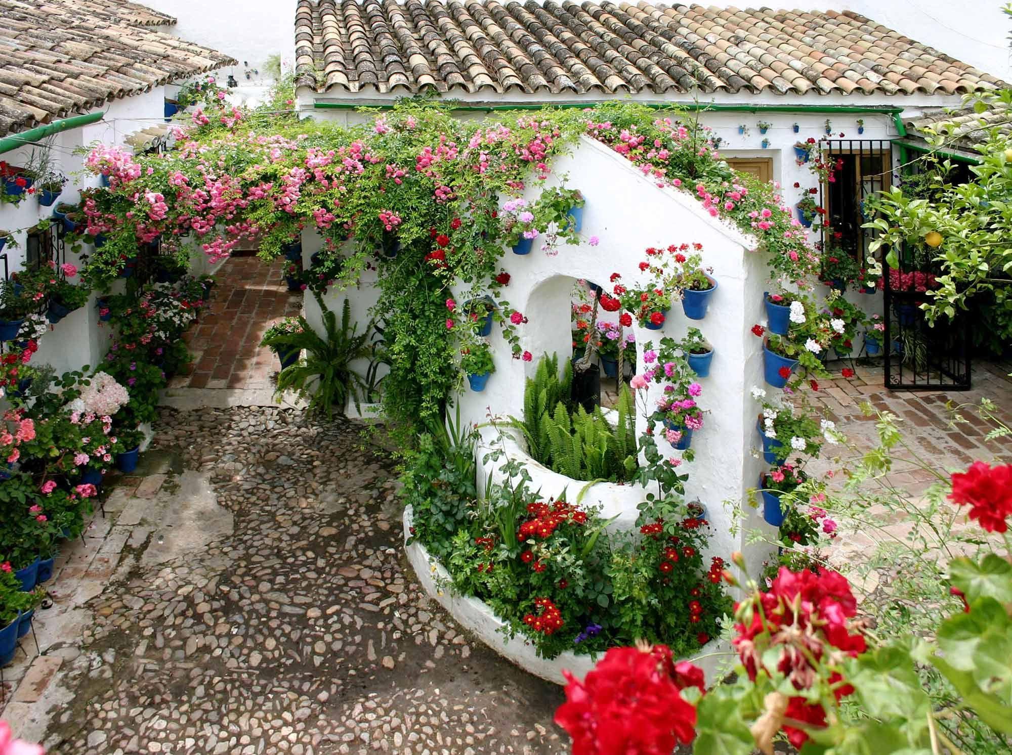 Web oficial de la fiesta de los patios de Córdoba, con información ...
