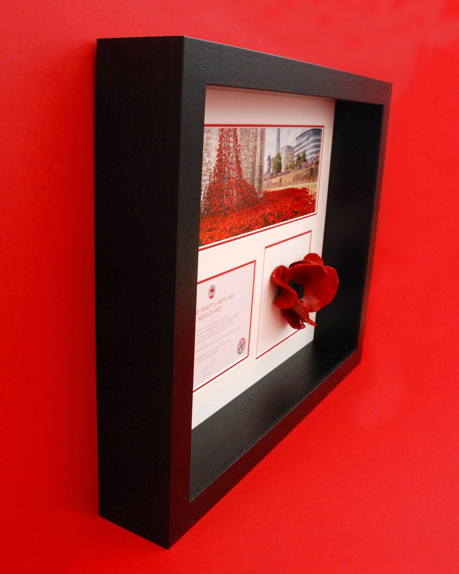 london poppy display frame in black wood - Display Frames
