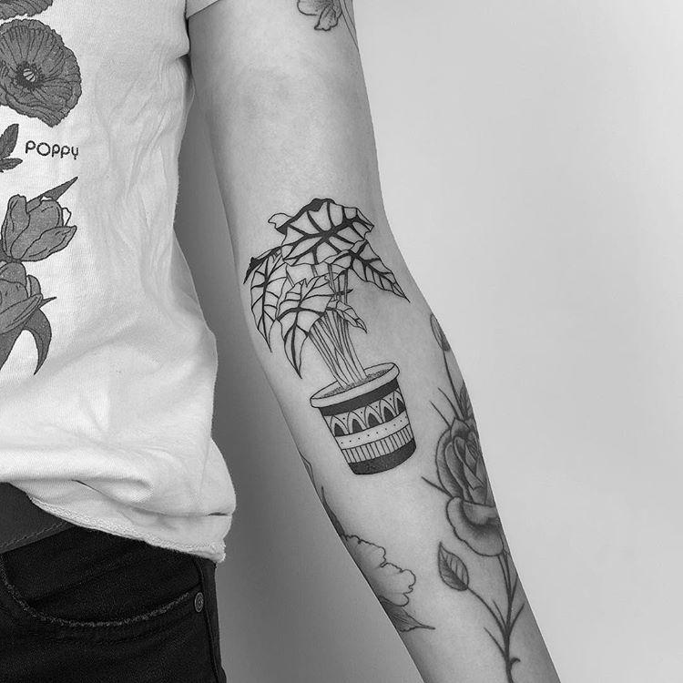African Mask Plant Minimalisttattoo Minimalist Simpletattoo Aesthetic Finelinetattoo Potplant Lineworktattoo Line Work Tattoo Fine Line Tattoos Tattoos