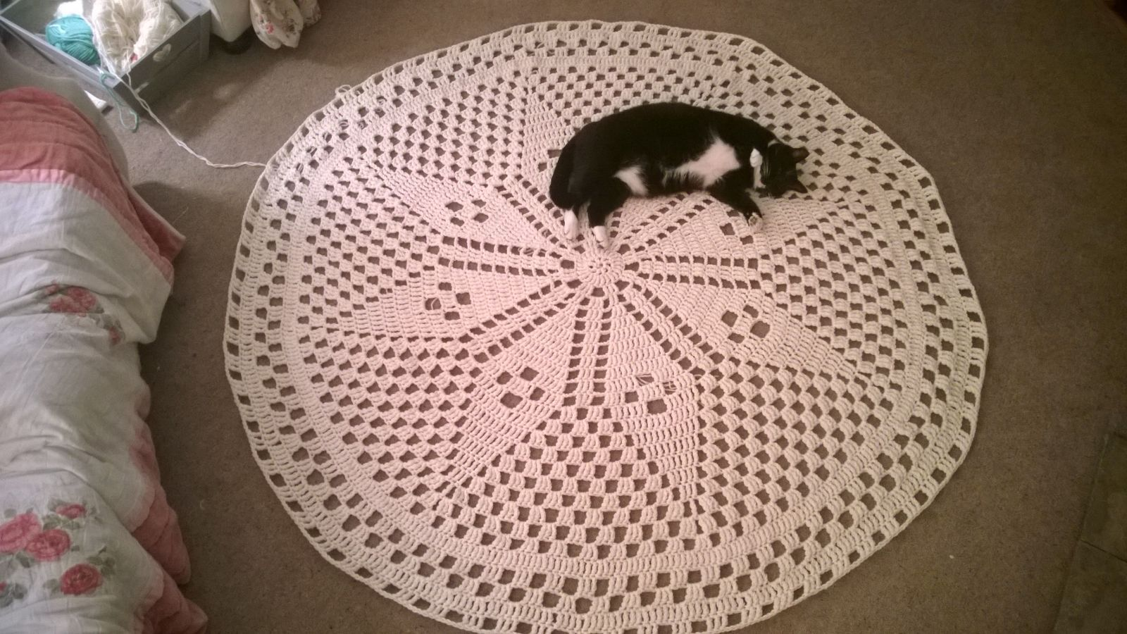 Least my cat likes the new rug! Old Family Circle pattern. Crocheted using 2 strands of aran weight wool.