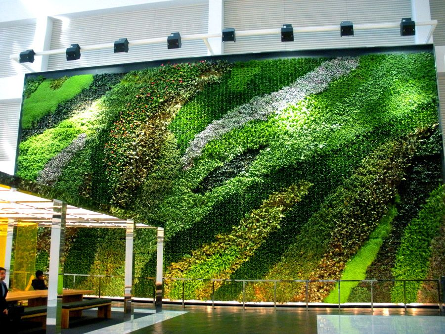 How To Create A Successful Green Wall Design Green Wall Design Vertical Green Wall Vertical Garden