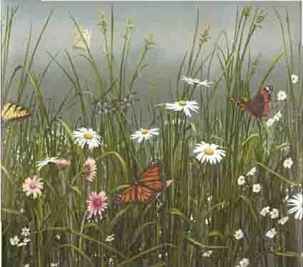 Monarch Butterflies, Daisy and Tall Grass Wallpaper Border