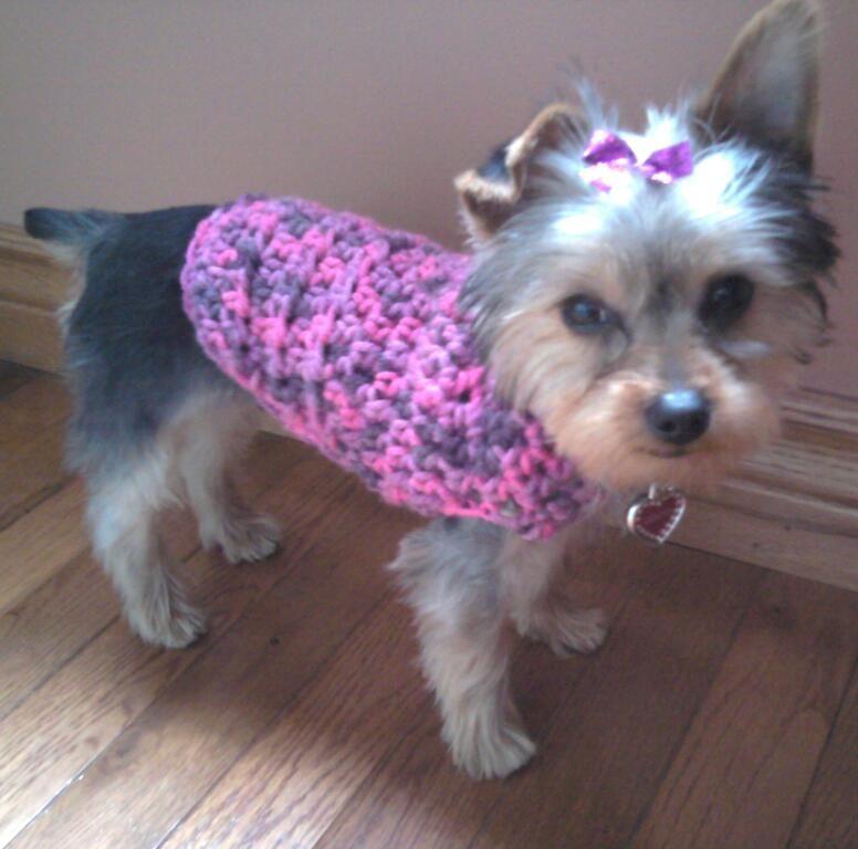 Crochet dog sweater I made   Pass It On   Pinterest   Mascotas