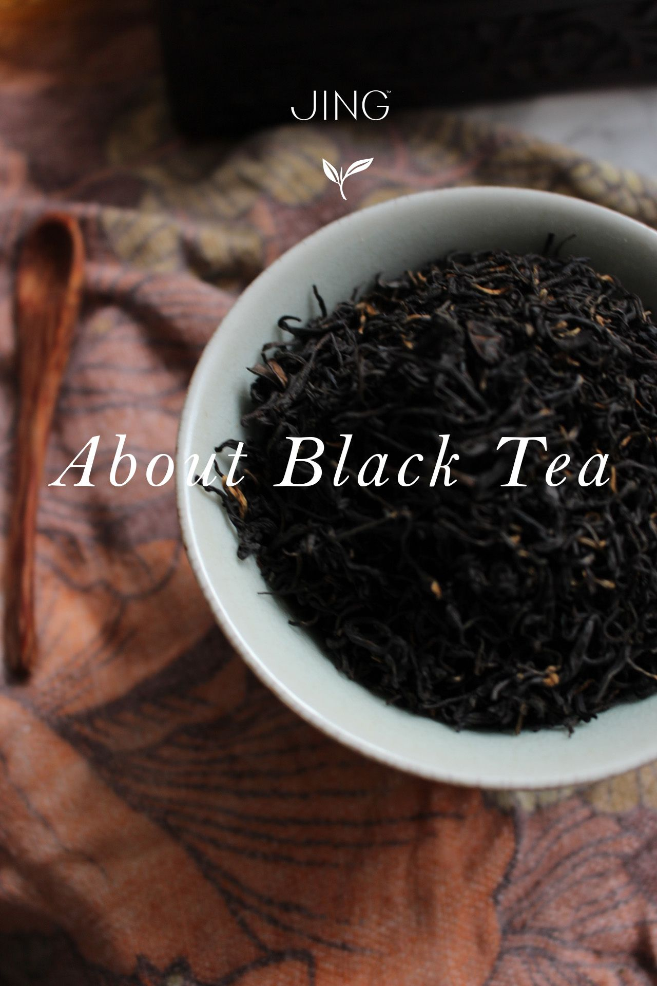 Everything You Need To Know About Black Tea In Our Expert Guide