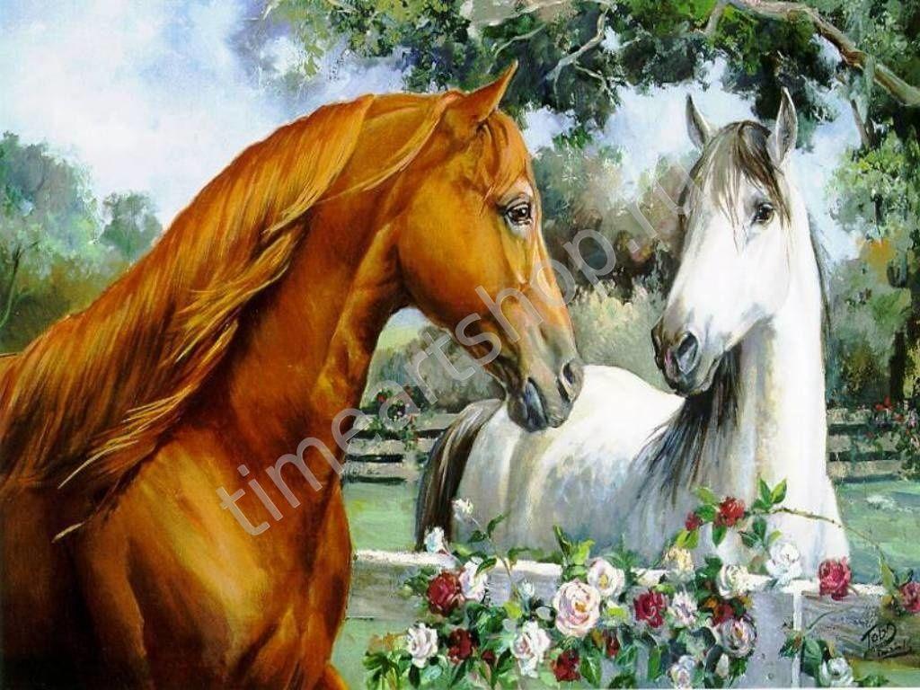 влюблённые лошади, картина раскраска по номерам, на ...