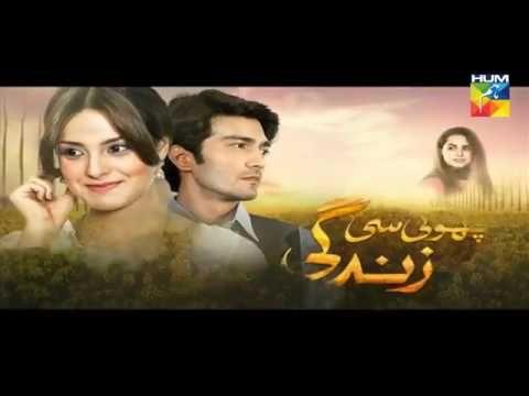 Choti Si Zindgi Episode 22 17 March 2017 Hum tv YouTube | Pakistani